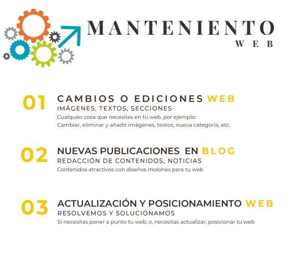 Mantenimiento web, ediciones